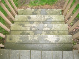 Composite decking Before (3)
